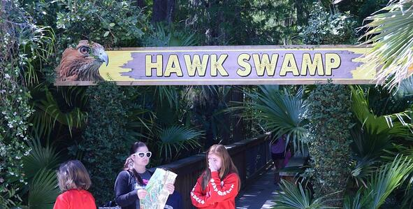 group of young girls in front of the hawk swamp at wild florida