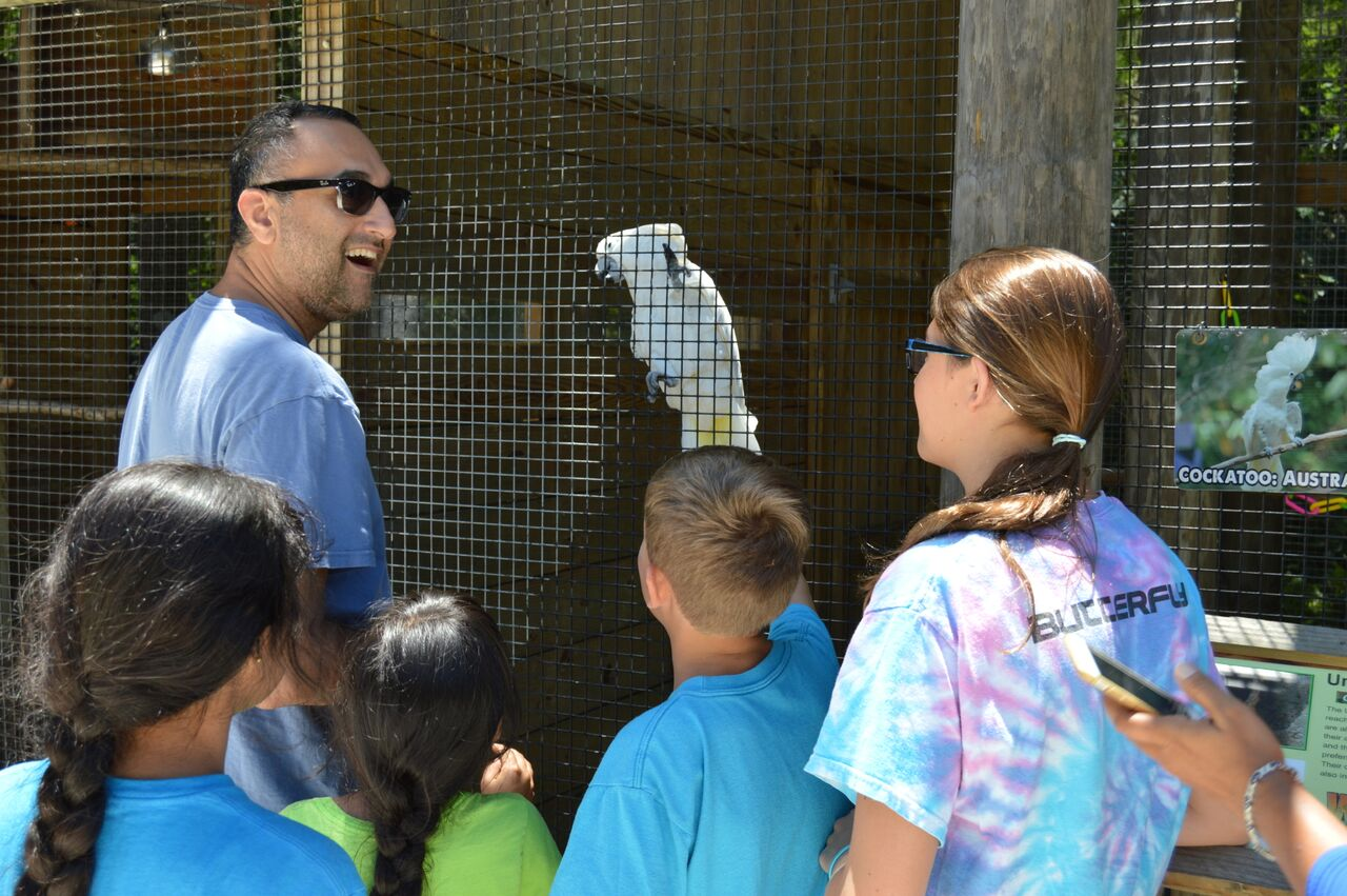 Gator and Wildlife Park at Wild Florida