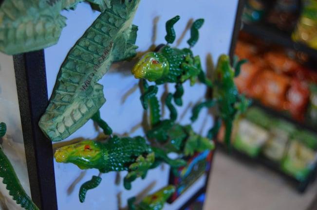 Florida gifts alligator magnet
