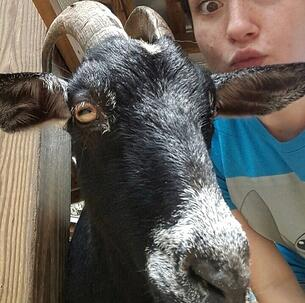 Young person takes a selfie with a goat at the Petting Zoo at Wild Florida
