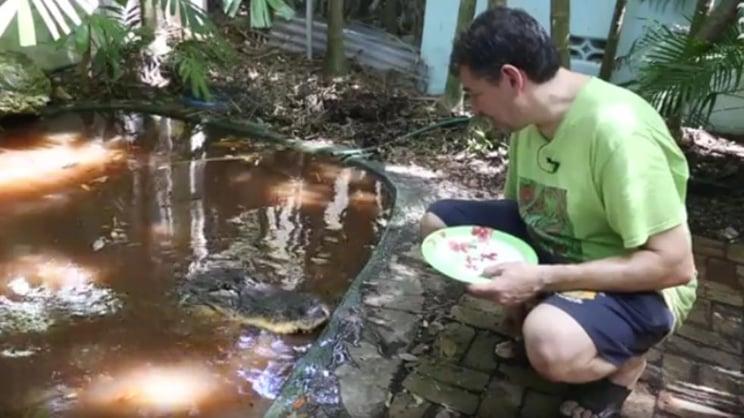 Gwendolyn the pet gator.jpg