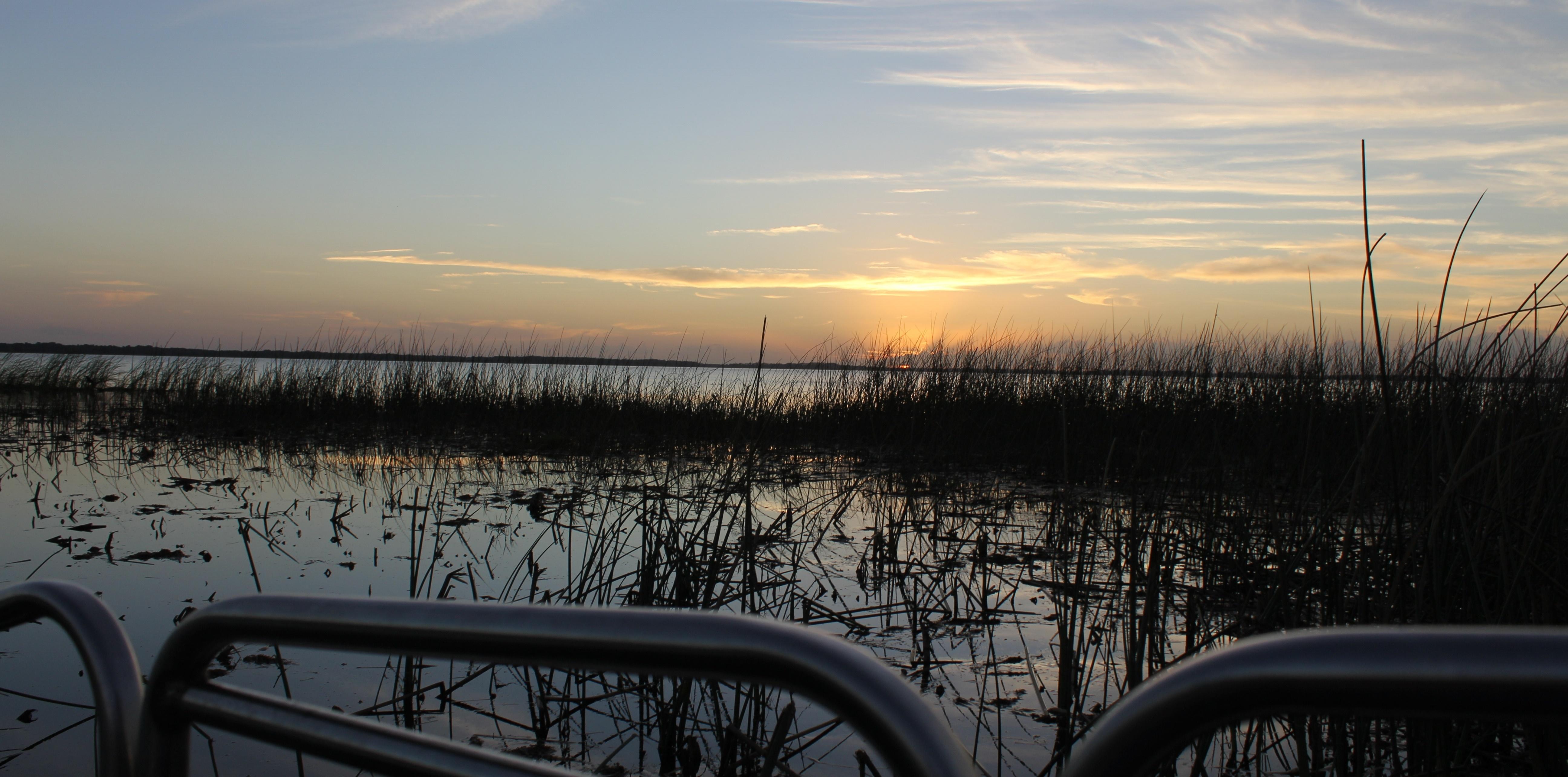 Everglades airboat ride