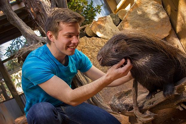 Porcupine encounter at Wild Florida
