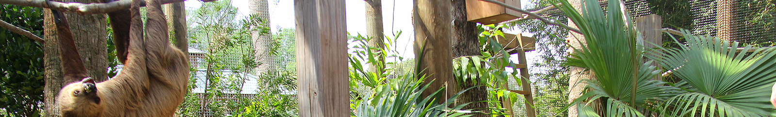 wildlife-park-header.png