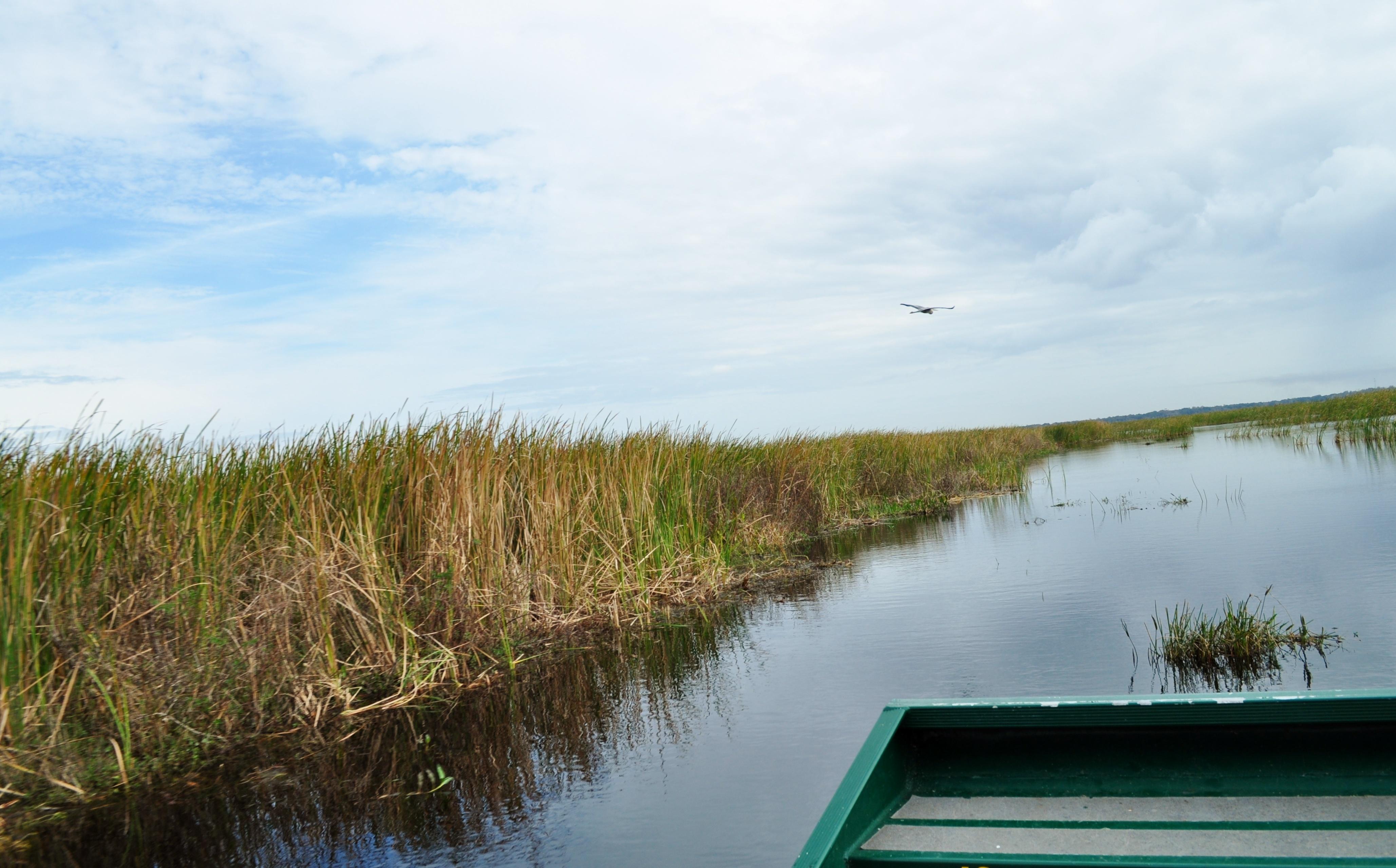 orlando_airboat_rides
