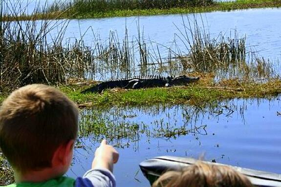 7 Things You Ll Want To Know Before You Ride On Airboats