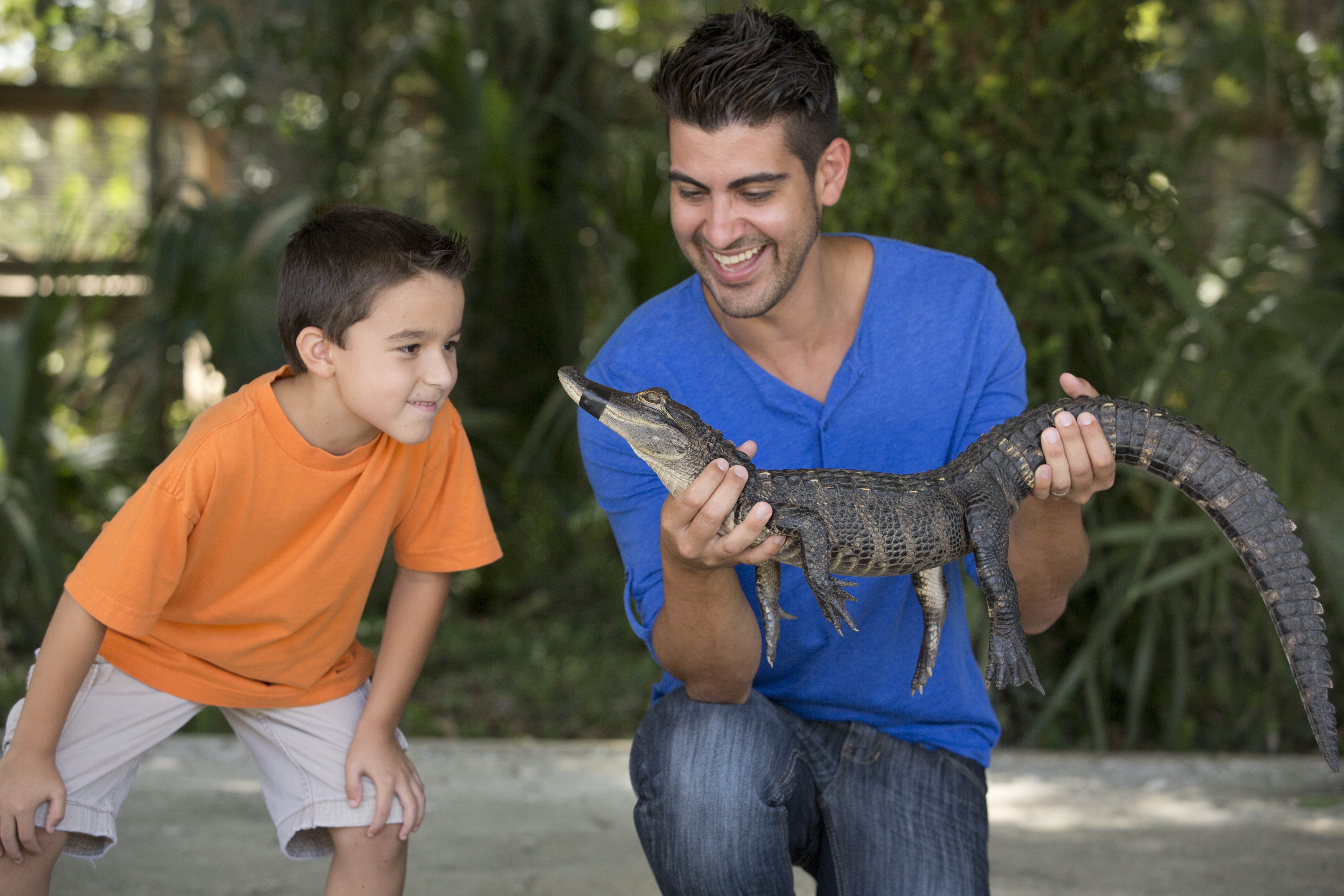 Why owning an exotic pet isn't a good idea